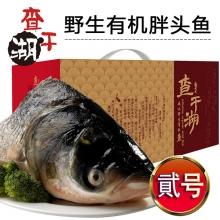 贰号-查干湖野生有机胖头鱼提货券