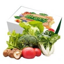 首农特菜C礼盒/绿色蔬菜/首农蔬菜基地直供